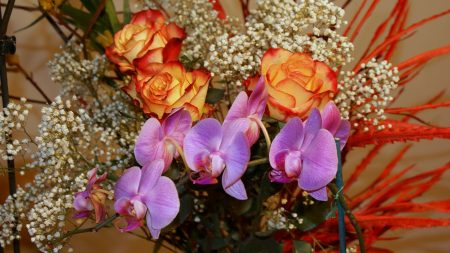roses, gypsophila, orchids