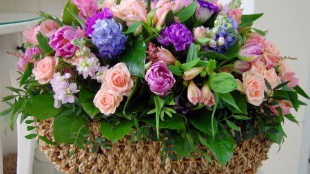roses, hyacinths, flowers