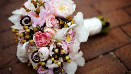 roses, irises, flowers