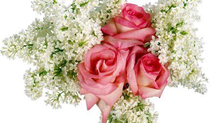 roses, lilacs, bouquet