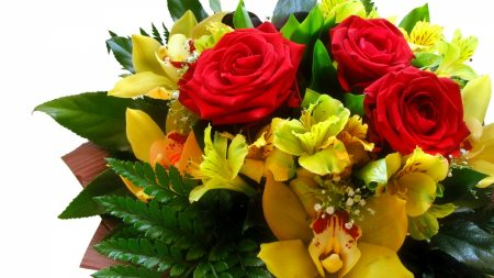 roses, lilies, bouquets