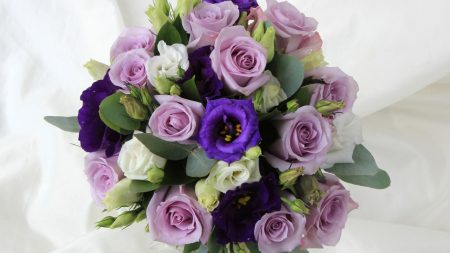 roses, lisianthus russell, color