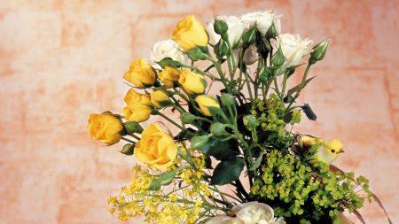 roses, peonies, vase