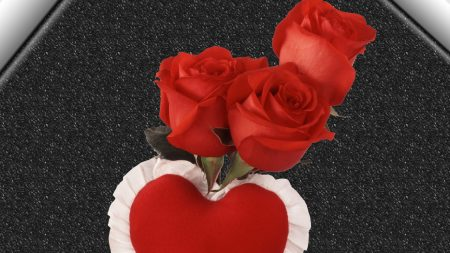 roses, red, heart