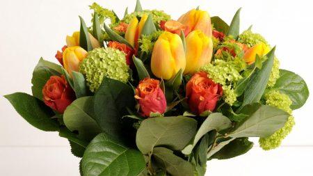 roses, tulips, hydrangea
