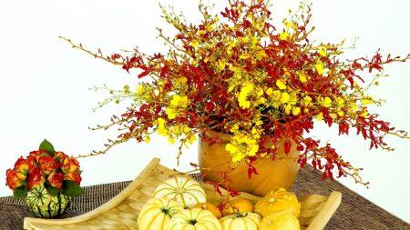 roses, vase, pumpkin
