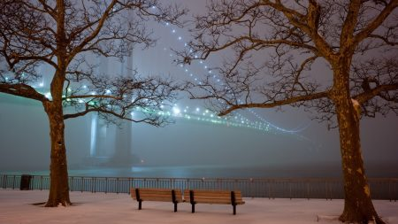 san francisco, bridge, snow