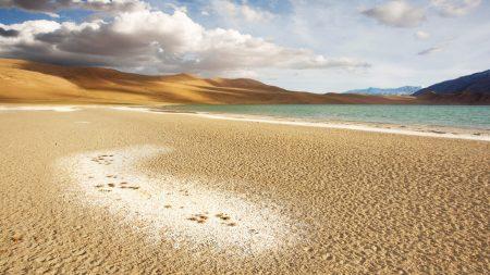 sand, coast, lake