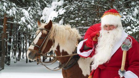 santa claus, horse, new year