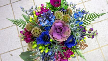 scabious starry, flowers, bouquet