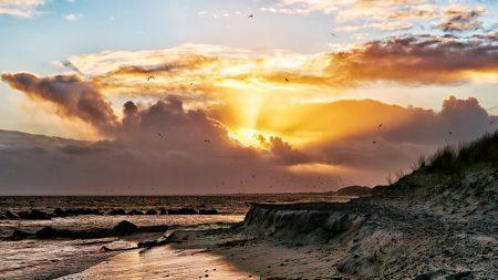 sea, coast, seagulls