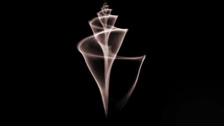 shell, spiral, shape