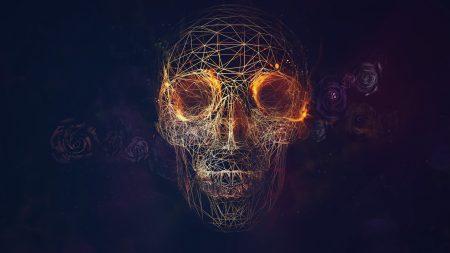 skull, lines, roses