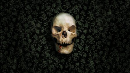 skull, skeleton, wall