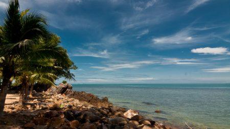sky, beach, palm trees