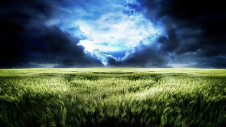 sky, field, gloomy