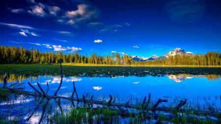 sky, lake, snag
