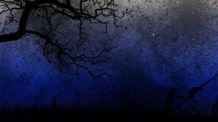 sky, trees, night