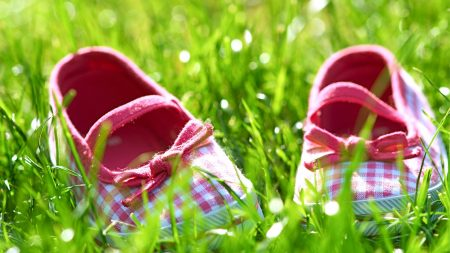 slippers, grass, shoes