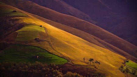 slopes, mountain, fields