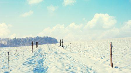 snow, columns, road