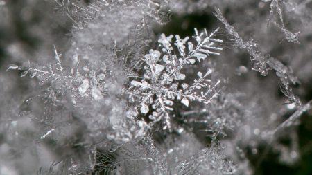 snow, snowflakes, ice
