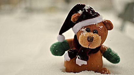 snow, teddy, teddy bear