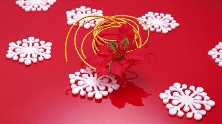 snowflake, flower, surface