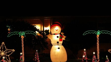 snowman, night, ornaments