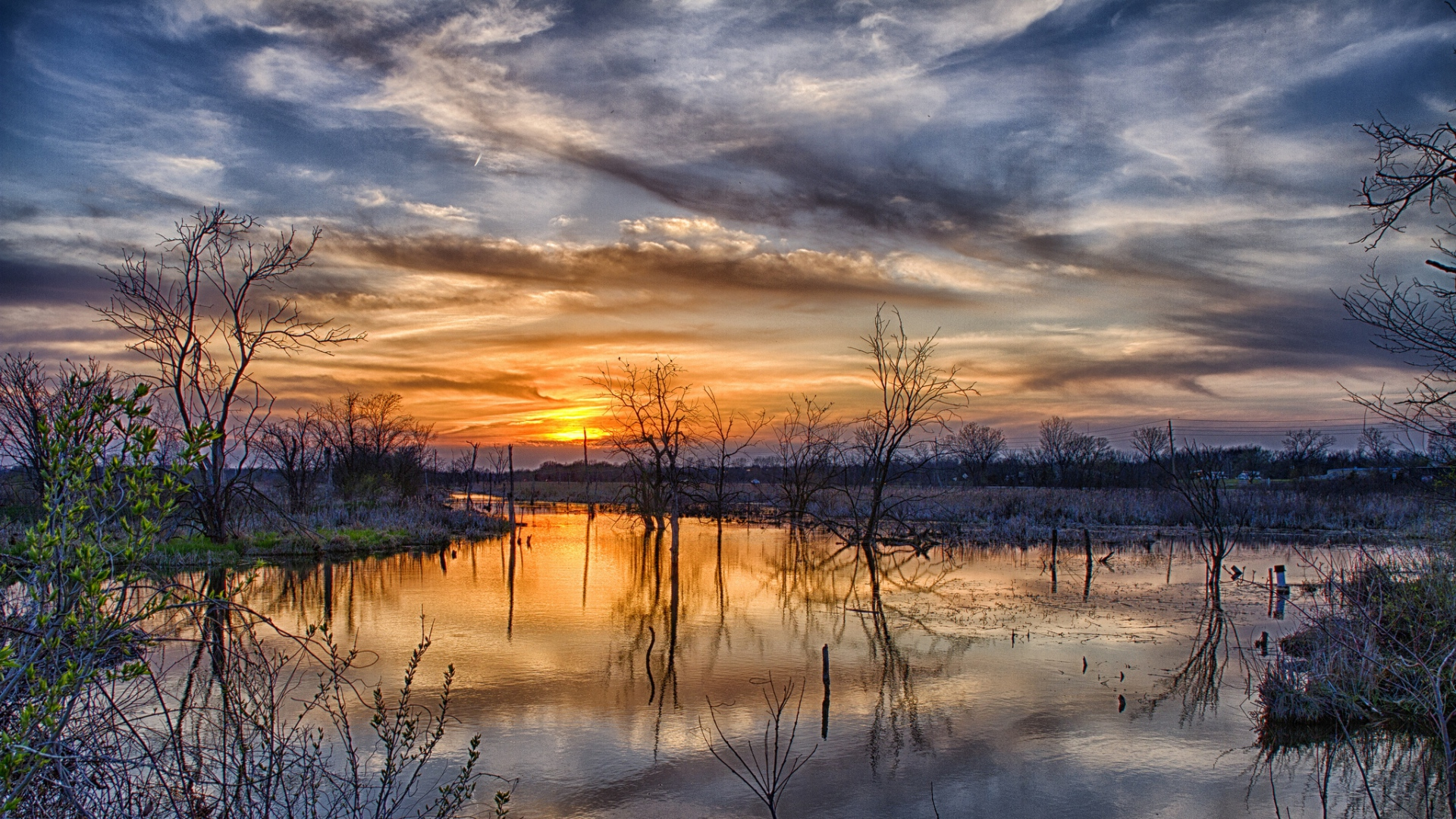 Earnings Disclaimer >> Download Wallpaper 1920x1080 spring, flood, trees, sunset ...