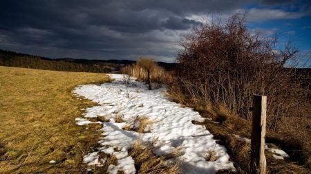 spring, snow, field
