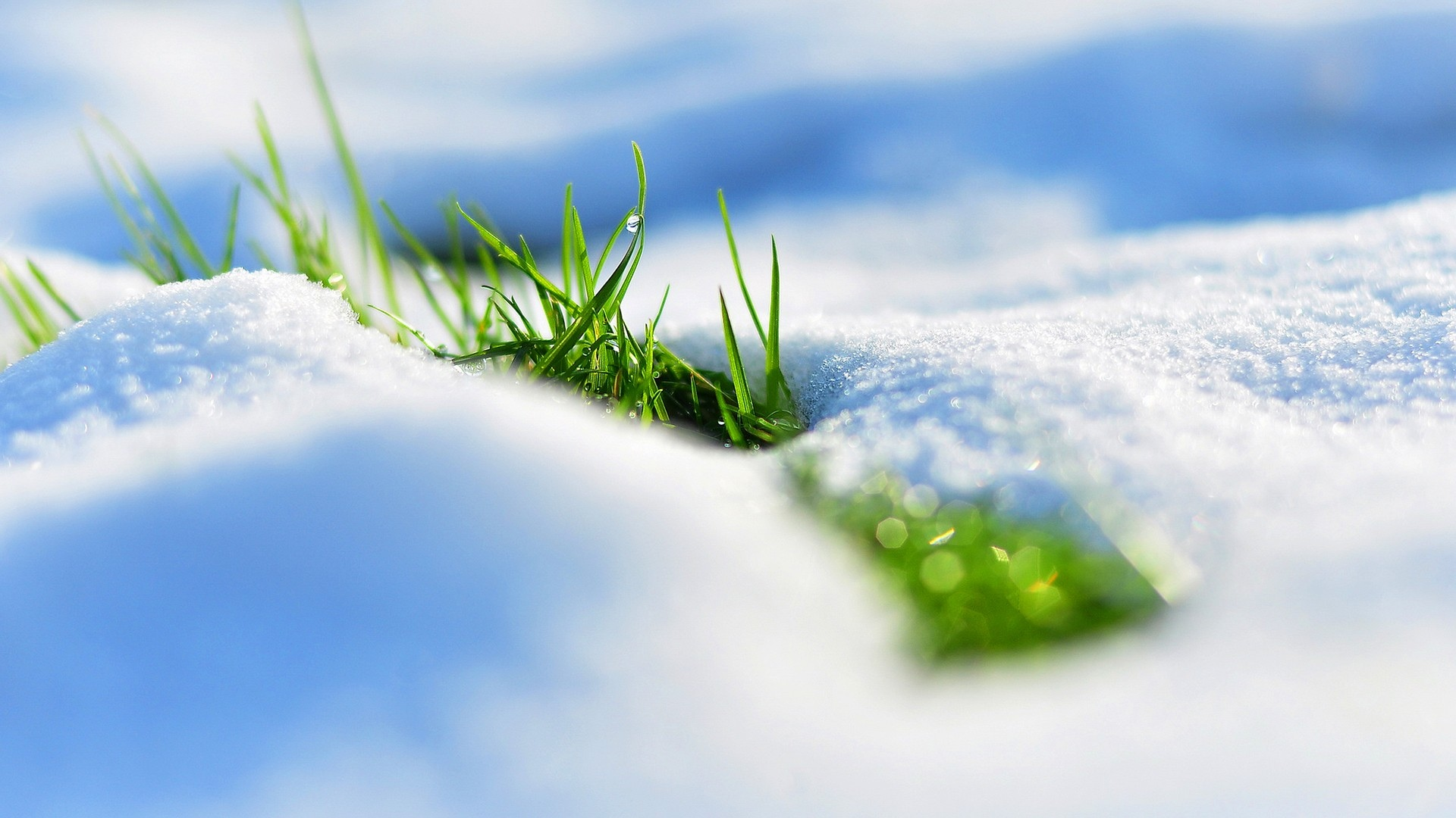 Download Wallpaper 1920x1080 Spring Snow Grass Reflections Full