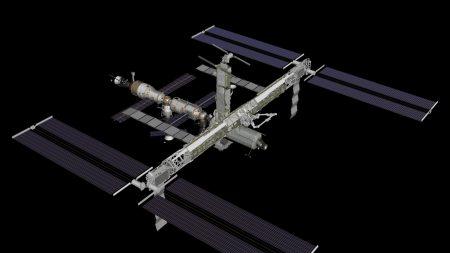 station, weightlessness, study