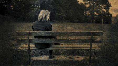 steven wilson, bench, grass