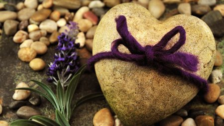 stone, flowers, beach