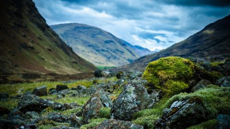 stones, moss, mountains