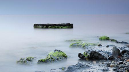 stones, moss, rocks