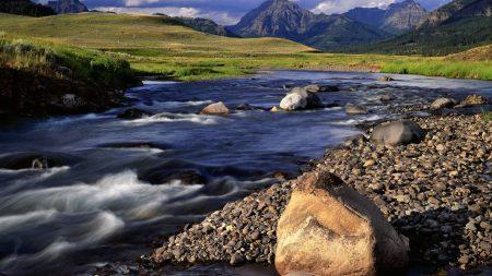 stones, mountain river, greens