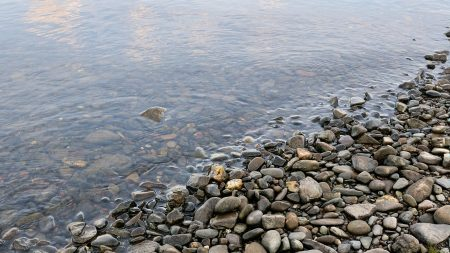 stones, pebble, water