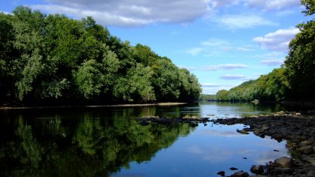 stones, river, trees