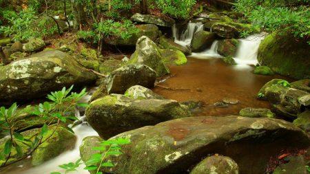 stones, stream, moss