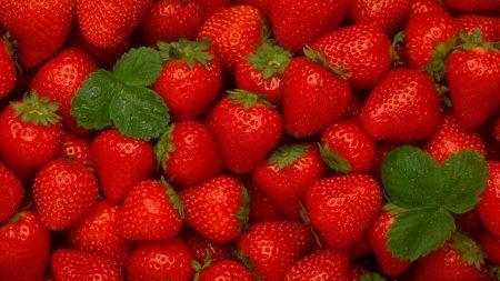 strawberry, ripe, red