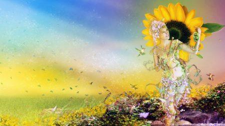 summer, sunflower, crop