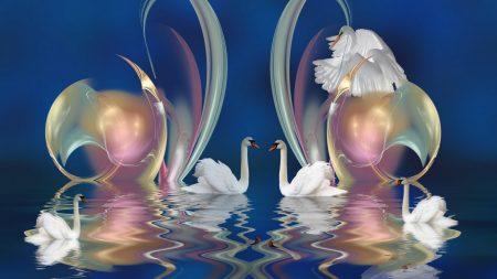swans, patterns, swim