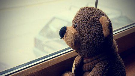 teddy bear, toy, cup