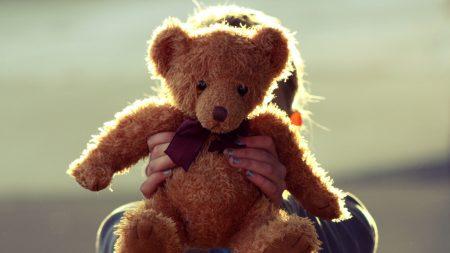 teddy bear, toy, hand