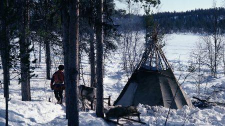 tent, smoke, deer