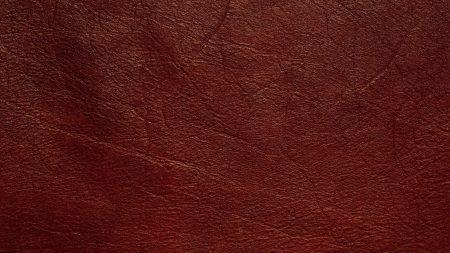 texture, skin, veins