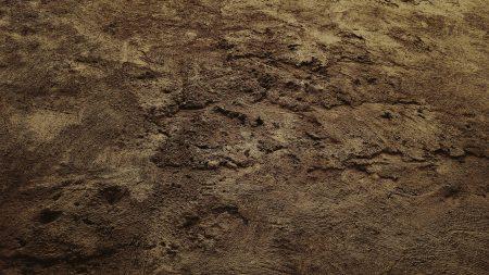 texture, soil, sand