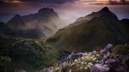 thailand, mountains, vegetation
